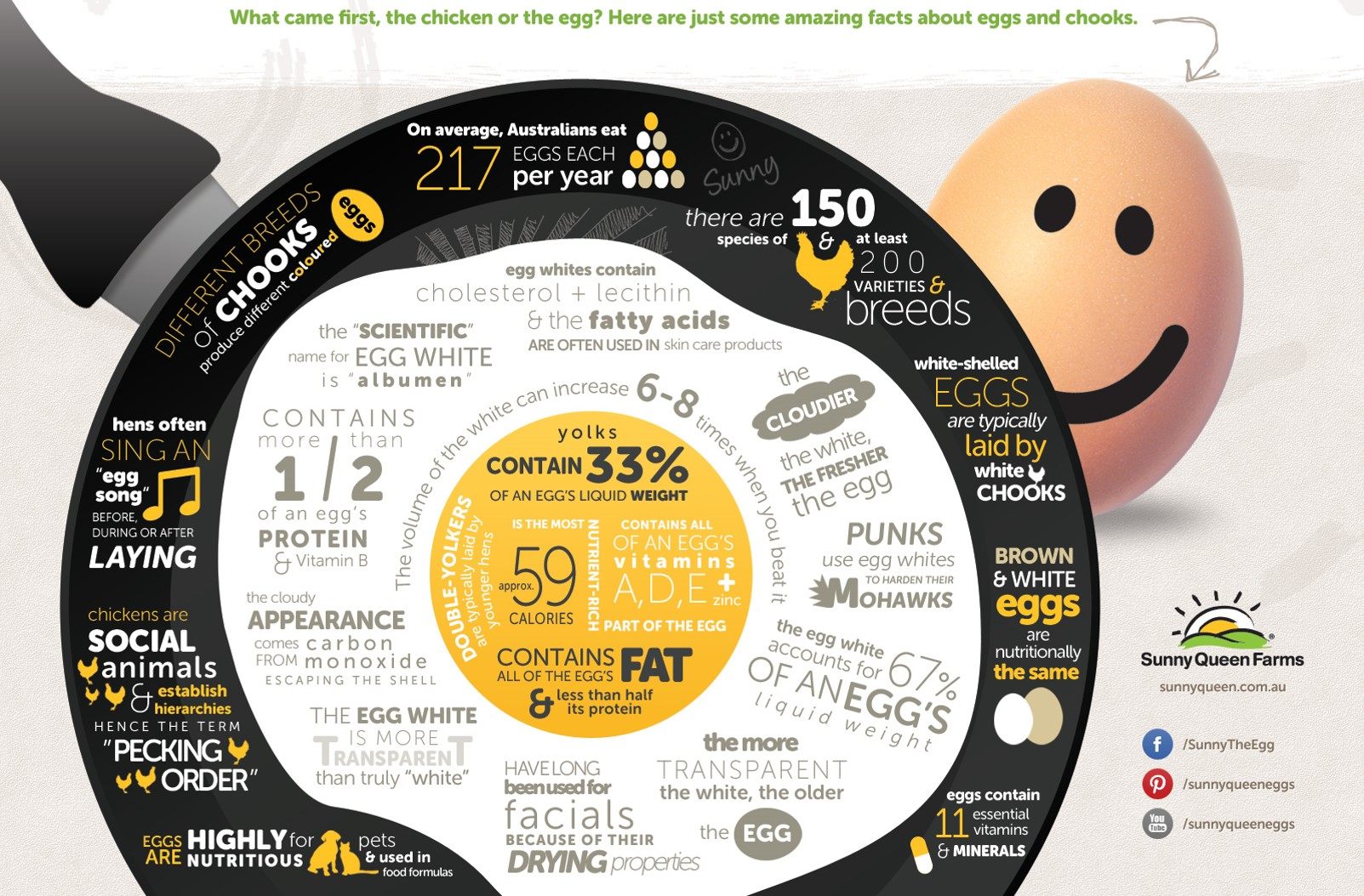 Century Food